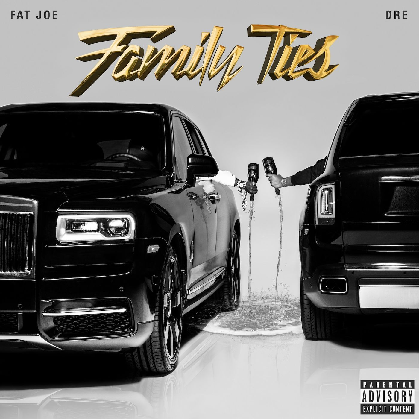 Cover Fat Joe - Family Ties (Explicit)